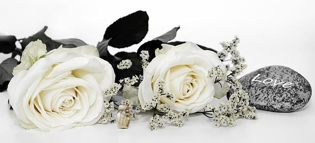 růže u prstenu